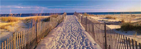 Cuadro canvas pathway to the beach