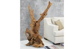 Figura decorativa raíz