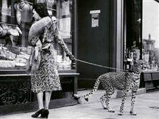 Cuadro canvas elegant woman with cheetah