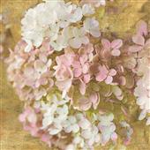 Cuadro canvas flores gilded hydrangea II