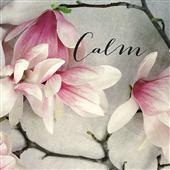 Cuadro canvas flores poem crop calm