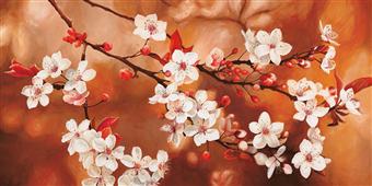 Cuadro canvas flores sakura