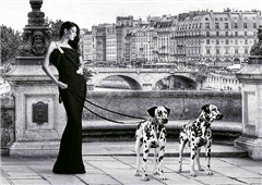 Cuadro canvas walking in paris