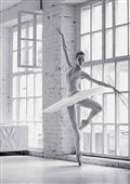 Cuadro canvas ballerina rehearsing