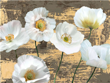 Cuadro canvas flores washed poppies