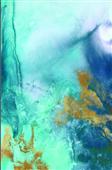 Cuadro canvas gold under the sea I