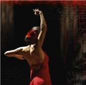Cuadro canvas flamenco I
