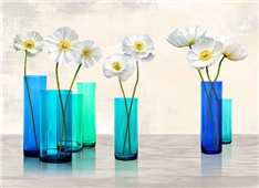 Cuadro canvas poppies in crystal vases