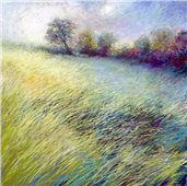 Cuadro canvas feathered field