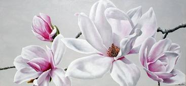 Cuadro flor magnolia I