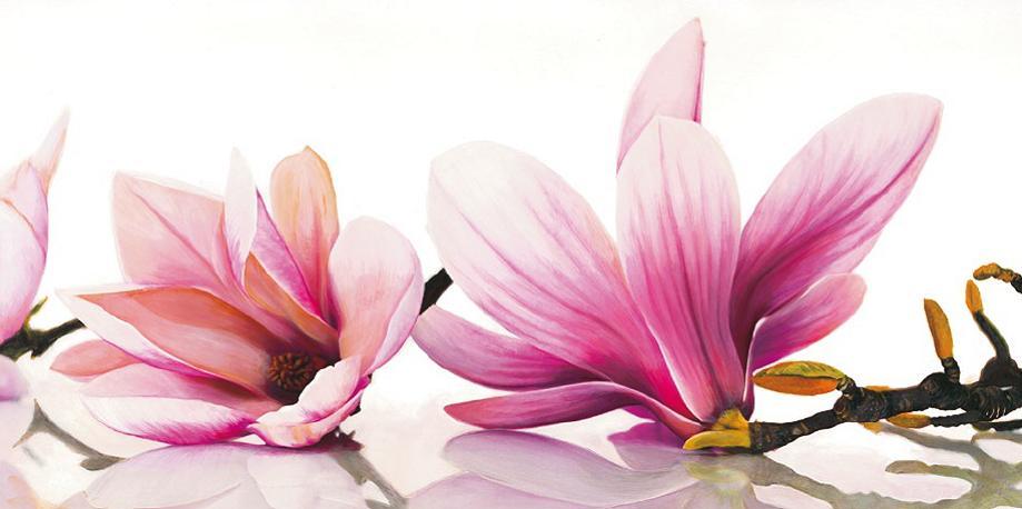 Cuadro canvas flores magnolia en - Portobellostreet es ...