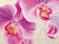 Cuadro canvas purple orchids - Cuadros serigrafiados - Objetos de Decoración