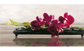 Cuadro canvas elevate - Cuadros serigrafiados - Objetos de Decoración