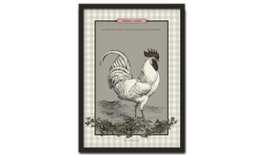 Cuadro Gris Mr Rooster Col. Animal Farm