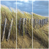Cuadros Tríos Canvas Du vent les dunes