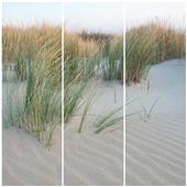Cuadros Tríos Canvas Dune de Sable