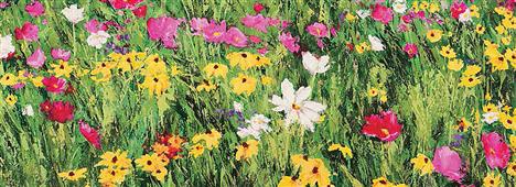 Cuadro canvas field of flowers - Cuadros serigrafiados - Objetos de Decoración