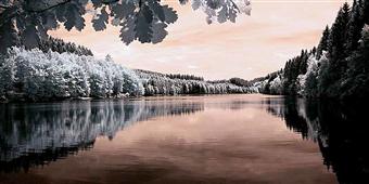 Cuadro canvas the lake