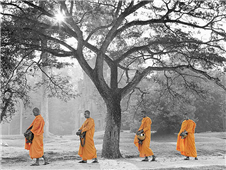 Buddhist Monks walking martin puddy