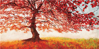 Cuadro canvas paisaje red leaves