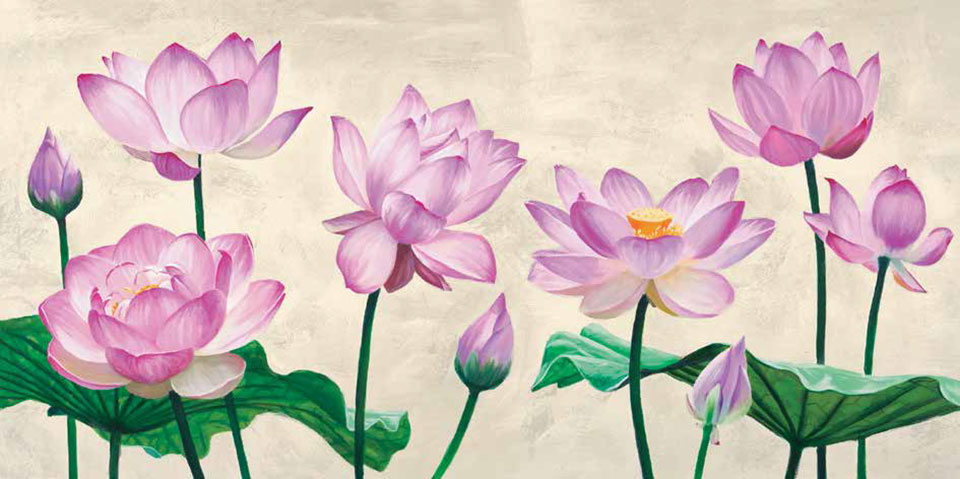 Cuadro canvas lotus flowers