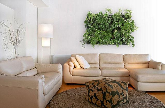 Un jard n en tu pared en - Cuadro jardin vertical ...